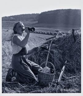 harvest break toned 1961 VAE03