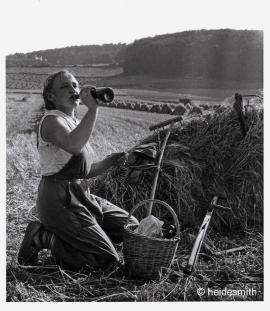 harvest break 1961 VAE02