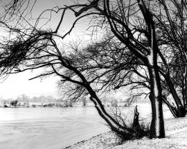 Snow on the Weser 1961 VAE11